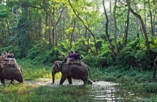 Volunteering in Nepal - Chitwan, Volunteering in Terai